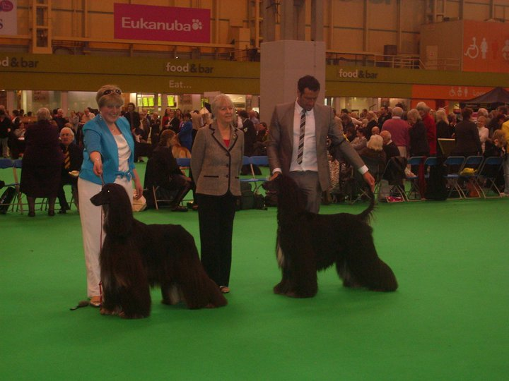 Sheila McDonald judging at Crufts 2011